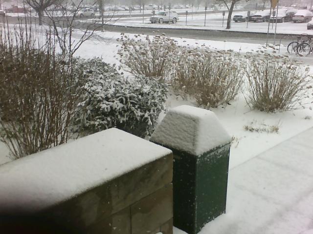 April Snow 1